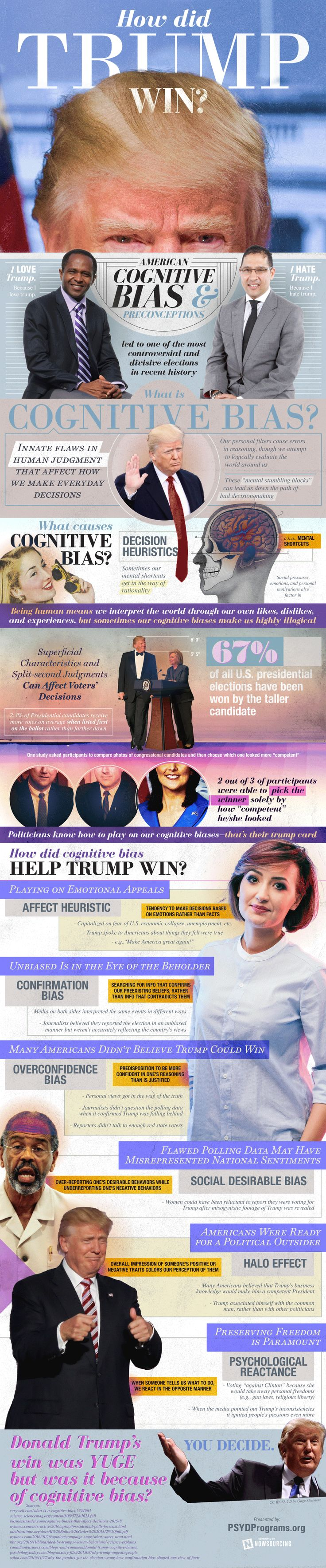 How Did Trump Win? by Nowsourcing