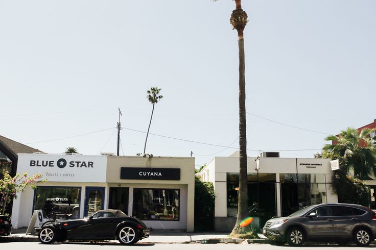 The LA City Guide to Abbot Kinney & Venice, California — Local Wanderer