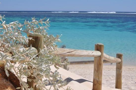 Coral Bay WA #Australia http://www.tripadvisor.com.au/ShowForum-g255101-i530-Western_Australia.html