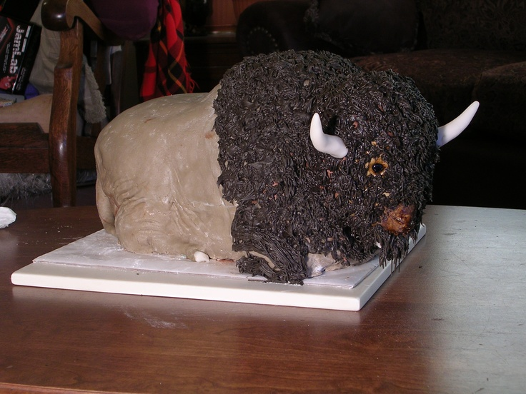 Best Gavin Nd Birthday Images On Pinterest Nd Birthday - Buffalo birthday cake