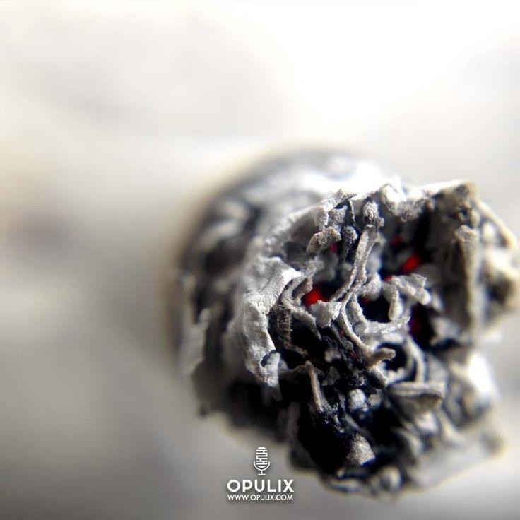 M s de 25 ideas incre bles sobre olor de humo en pinterest - Quitar olor a tabaco ...