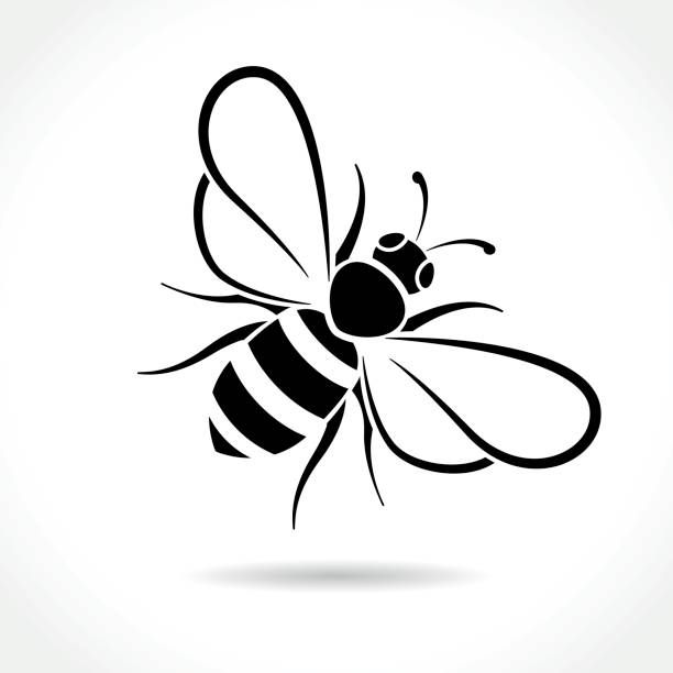 Illustration Of Bee Icon On White Background Bee Icon Bee Drawing Bee Illustration I think this looks way better than it did before! illustration of bee icon on white