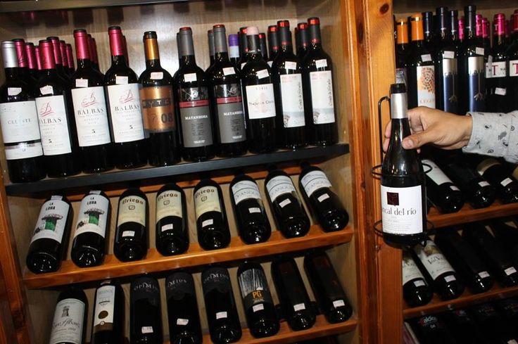 Cata de vinos Elcano