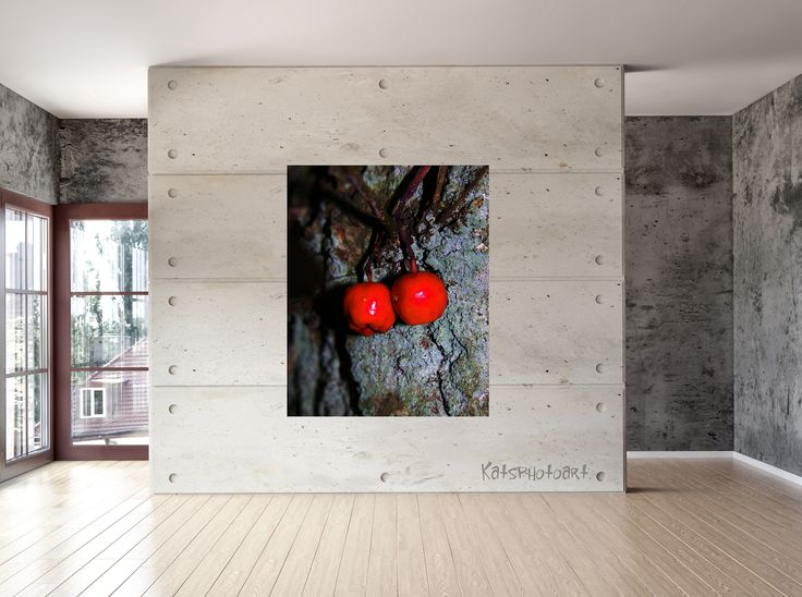 "Kats Original "" Apples"" Certified Fine Art PhotoRag print. 100x 100 cm Diasec 2 mm mat acrylaat / 4 mm Alu-Dibond."