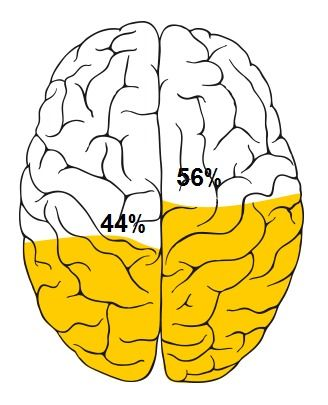 Take the test - are you right brain or left brain? I am almost equal with the right being dominant.