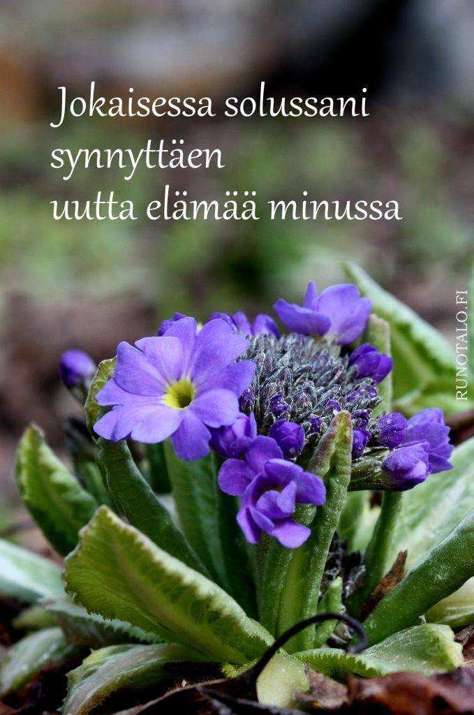 Jokaisessa solussani... - voimakortti Runotalo.fi