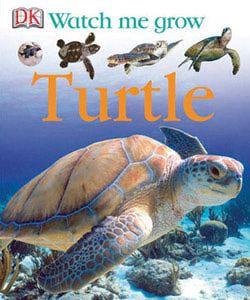 Watch Me Grow: Turtle - read online
