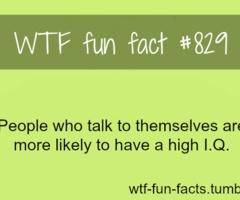 WTF-fun-facts : funny & weird facts. I might have to start talking to myself... wait I already do