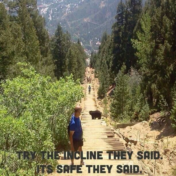 Colorado Springs And: 71 Best Images About Colorado Springs On Pinterest