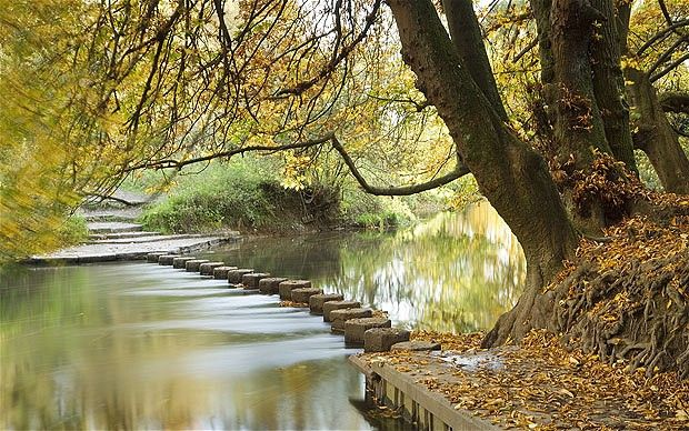 Boxhill, Surrey, the stepping stones