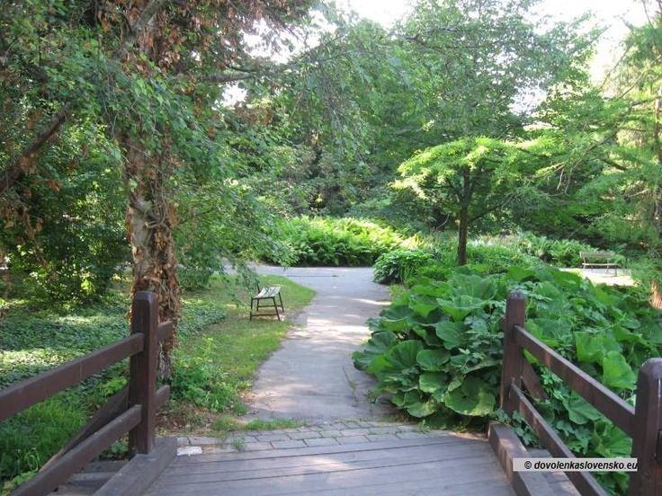 Bratislava - Botanická záhrada 8
