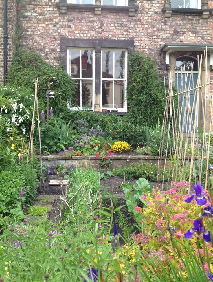 front garden designs for terraced houses a small garden in the city woolly green