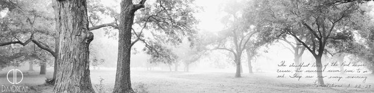 http://daydreamphotography.net/