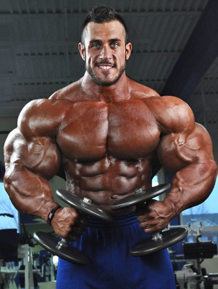 Muscle Morphs By Hardtrainer01 Bodybuilder Muscle