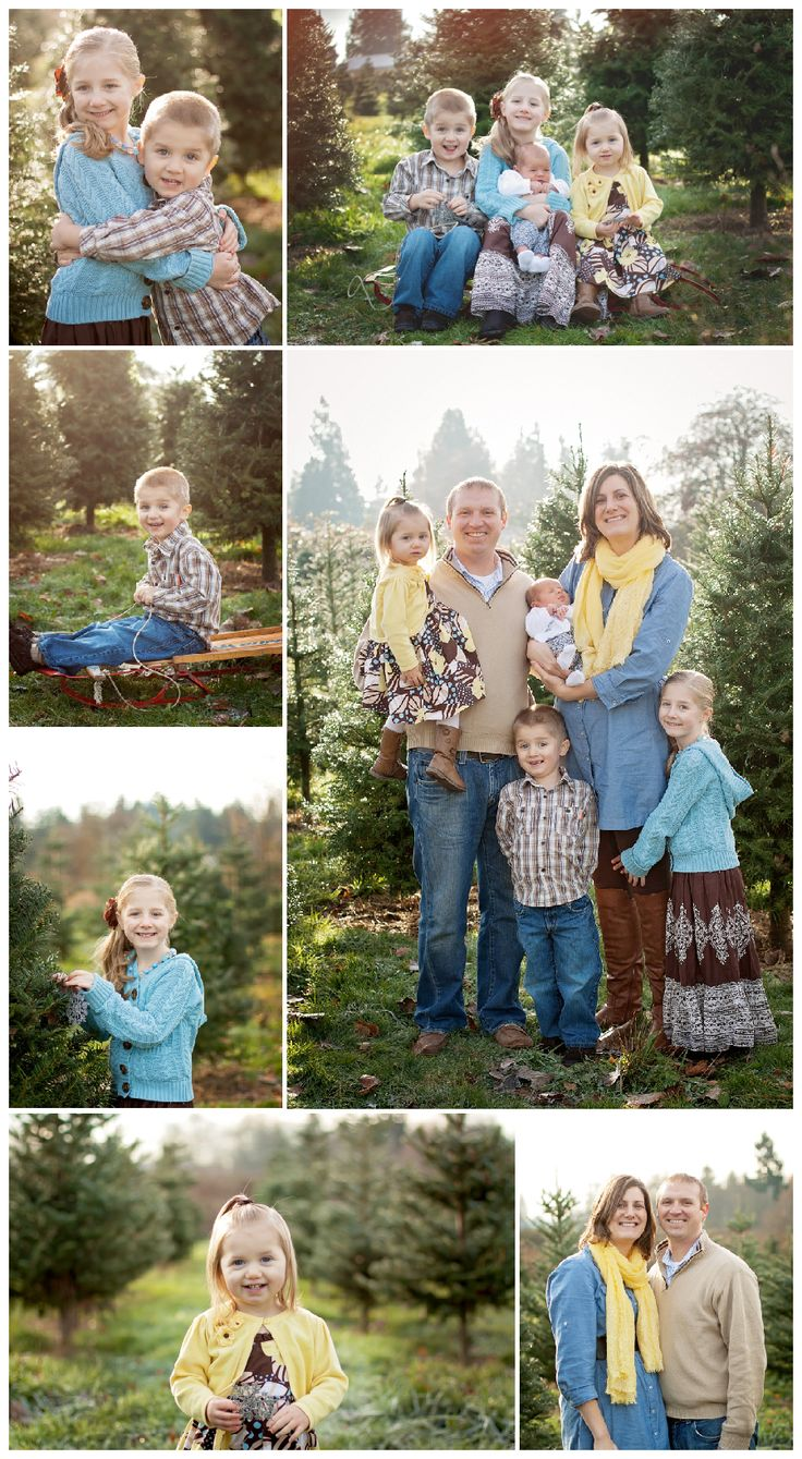 outdoor christmas tree farm family pictures | Outdoor Christmas Mini Sessions