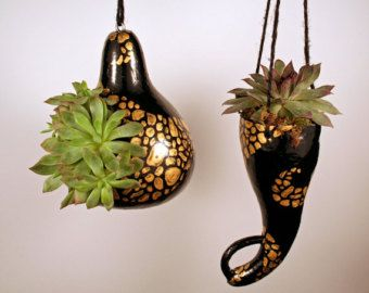 Gourd bird feeder or succulent and cactus hanging by EricsGourdArt