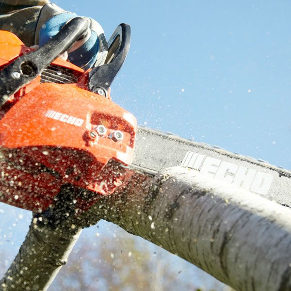 In the market for a chain saw? Our staff expert shows you the most useful features on chain saws and then tests the performance of 7 popular models. He includes such features as starting ease, chain choice, chain tensioners, fuel and oil systems and more. Be sure to read the results of his chain saw tests before you buy.