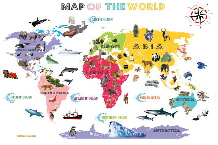 Interactive World Map For Kids - White and Bright | Includes animals and landmarks for each continent