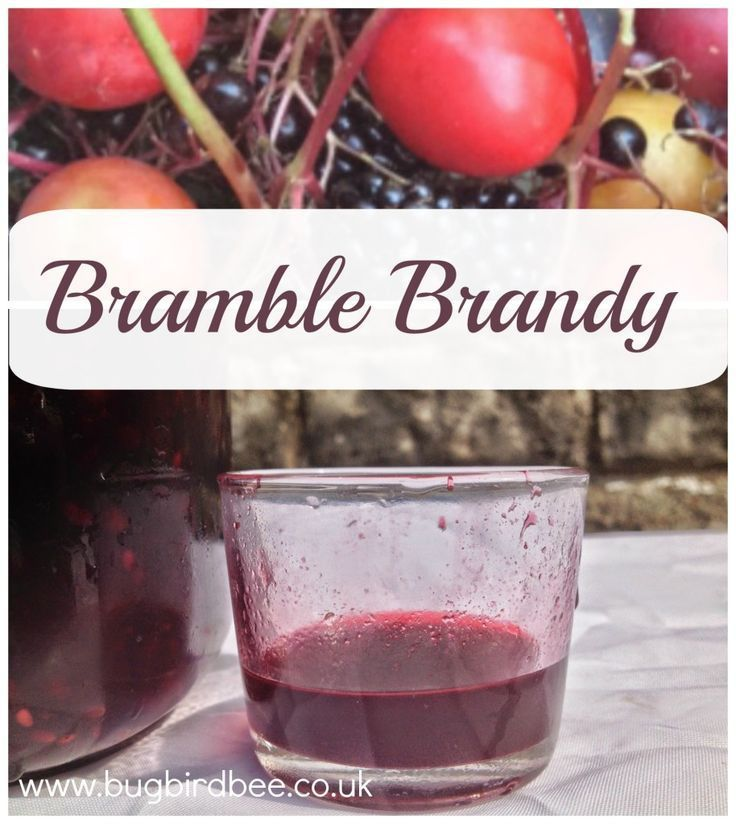 How To Make Bramble Brandy | Recipe | Hot toddy ...