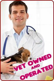 Discount Pet Meds #puppy #adoption #websites http://pet.remmont.com/discount-pet-meds-puppy-adoption-websites/  Buy Discount Pet Supplies for Cats and Dogs Need pet supplies direct for your dog and cat? Buy discount vet products online and save! Buy pet supplies online and save over 40% on all name-brand vet products. Compare our cheap prices with your local vet or pet shop on leading pet supplies such as Trifexis, Revolution, Frontline Plus and Heartgard Plus. Also compare our cheapest…