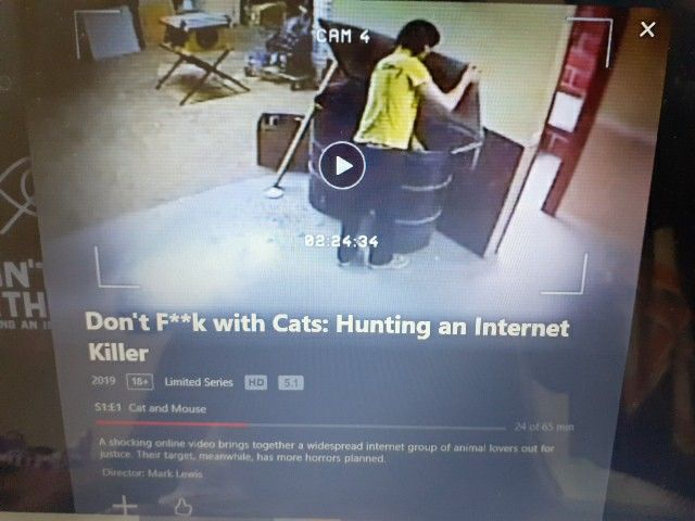 Don T F K With Cats In 2020 Animal Groups Animal Lover Social Media