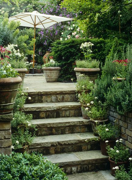 Potted Garden lining the stairs. Visit www.Sollecito.com for more landscaping ideas. #LandscapeNursery #LandscapeIdeas #FlowerNursery