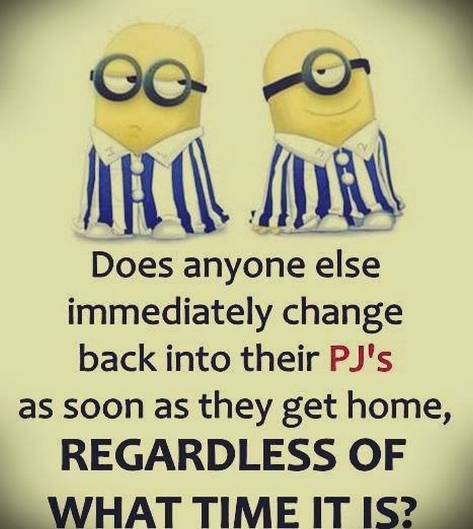 Funny minions images with captions (01:59:06 PM, Monday 14, September 2015 PDT)…