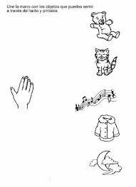 Resultado de imagen para actividades sobre los organos delos sentidos para niños