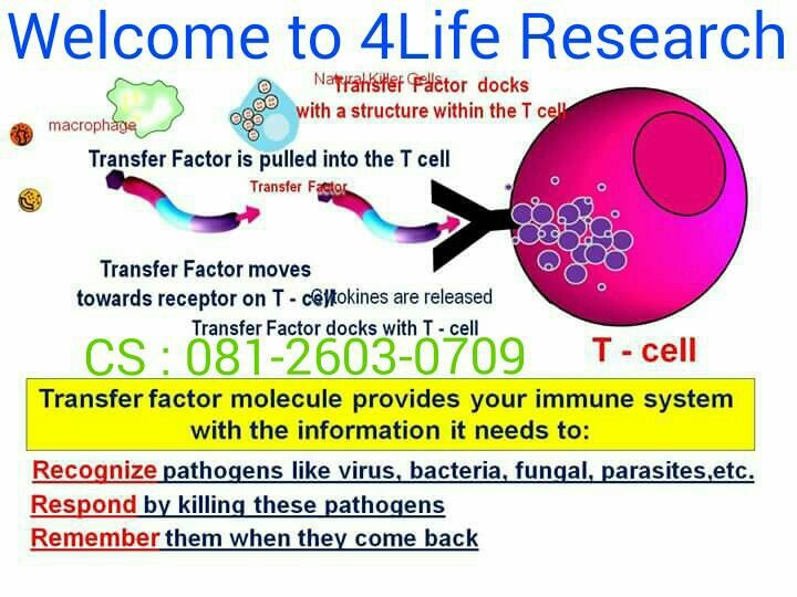 4Life Transfer Factor for immune system