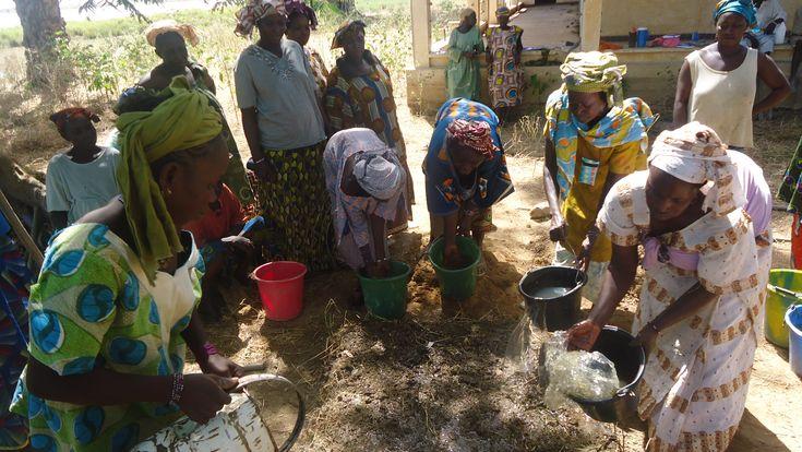 L'agroécologie est une solution face au réchauffement climatique, au service de la vie, de l'autonomie alimentaire et de la sauvegarde de la terre nourricière.