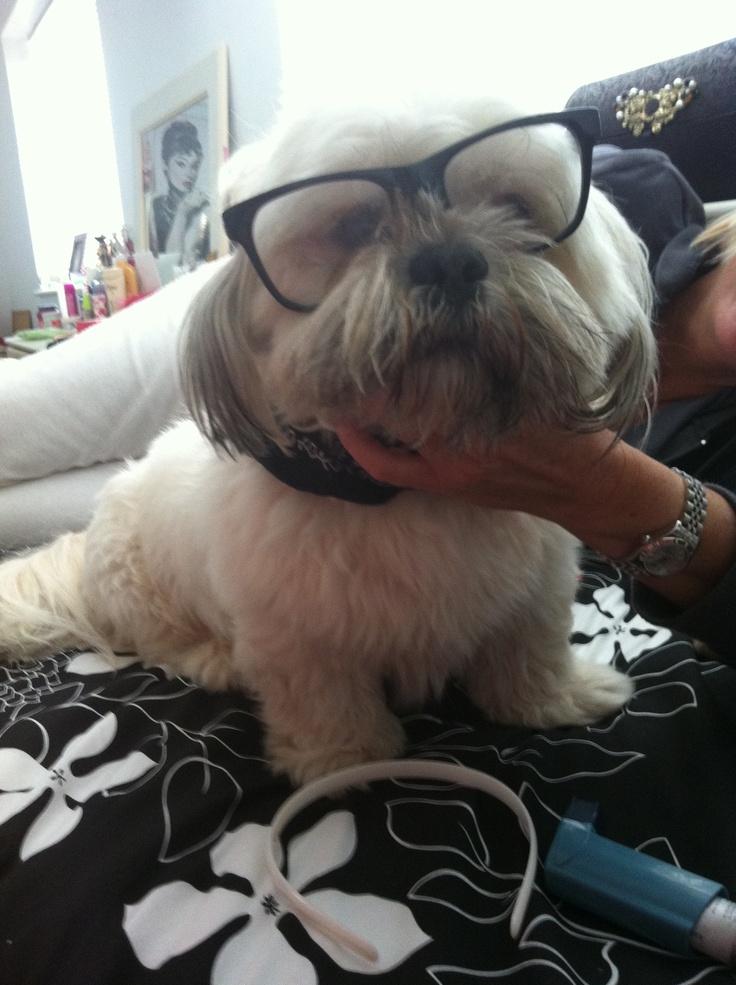 Geeky Barney