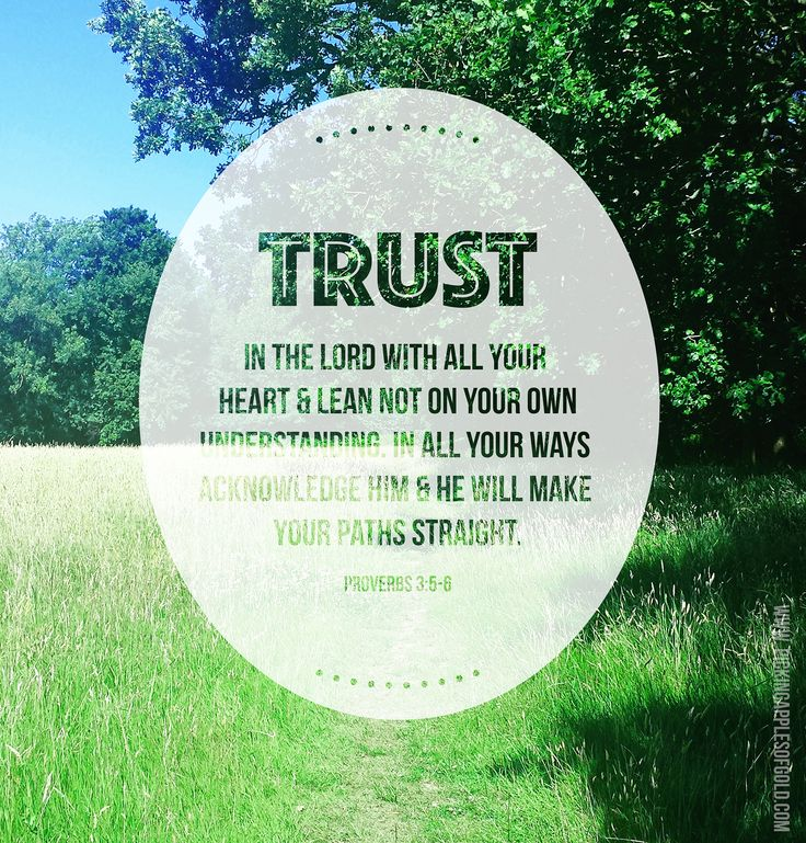 Trust // Proverbs 3:5-6