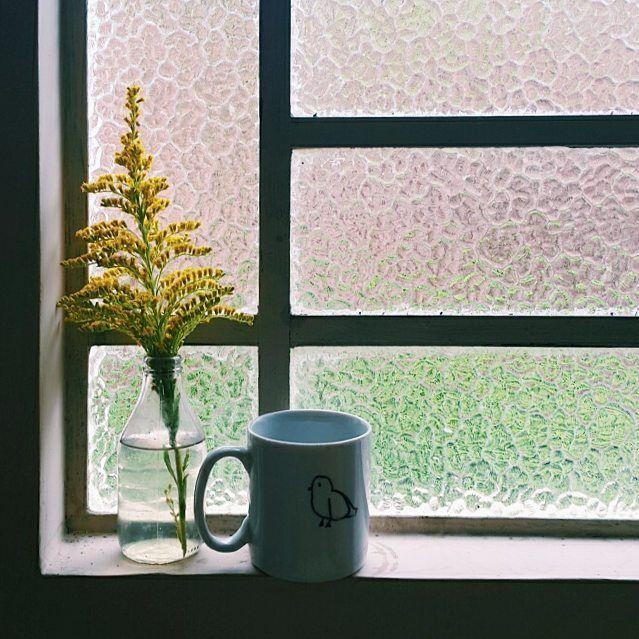 Manhã chuvosa 💛 ☔ #morning #manifestovuou #vidasimples #bird #cup #coffee