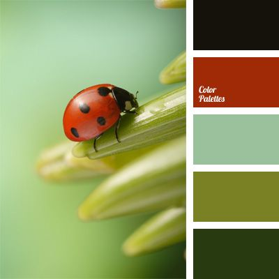 Shades of red and black in the color palette are combined in harmony with shades of green and pale blue.