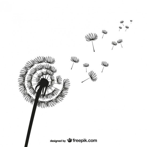 dandelion-silhouette-vector_23-2147499337