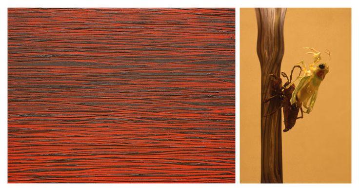 Ausstellungen /Exhibitions | Galerie an der Pinakothek der Moderne / Barbara Ruetz / Internationale Gegenwartskunst in München / International Contemporary Art in Munich Germany