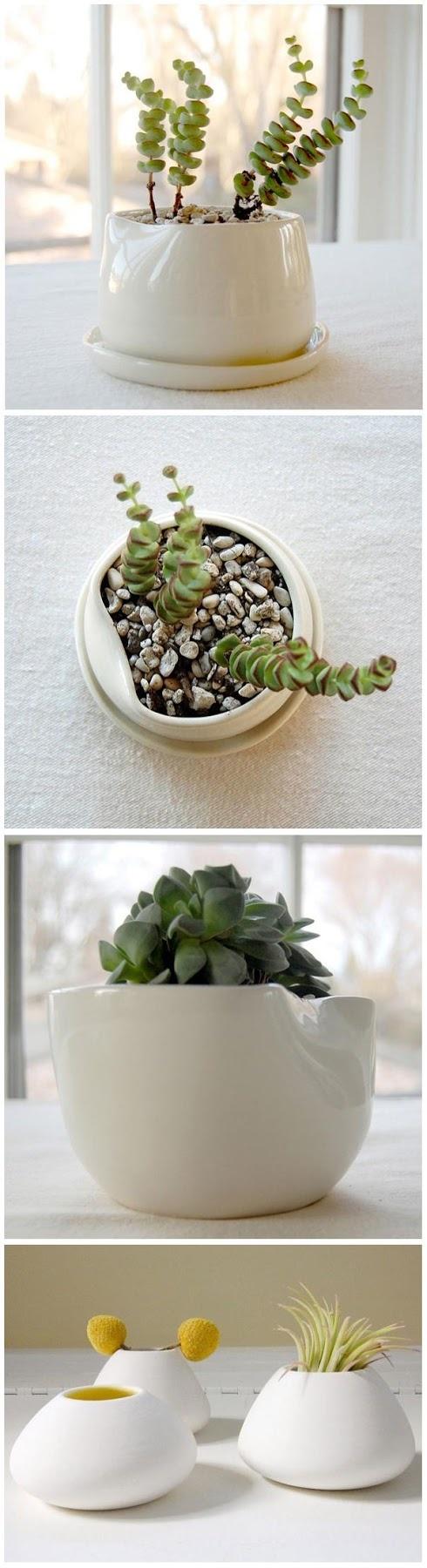 Green Home Ideas : Pigeon Toe Ceramics
