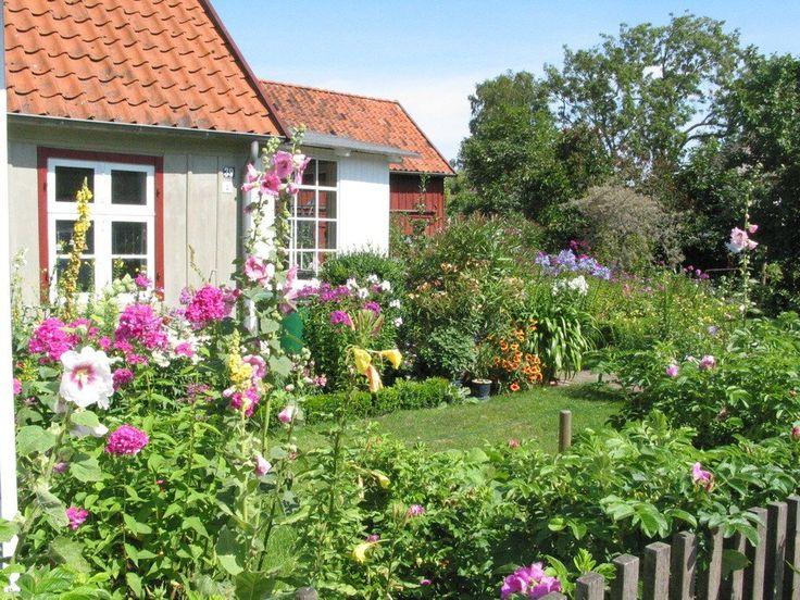 Das kleine Rote (mit Bildern) Ostsee urlaub ferienhaus