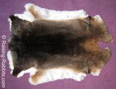 Rabbit Pelts. How to tan rabbit fur, resources, directions, ideas