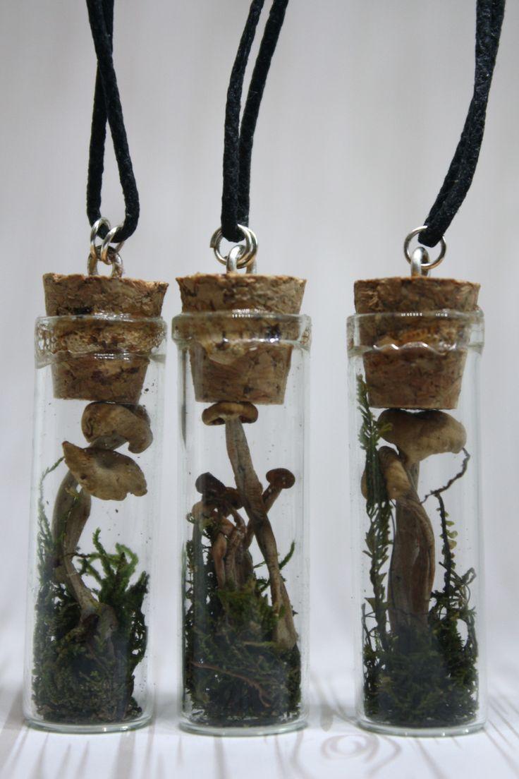 bottled earth   Forest Mushroom