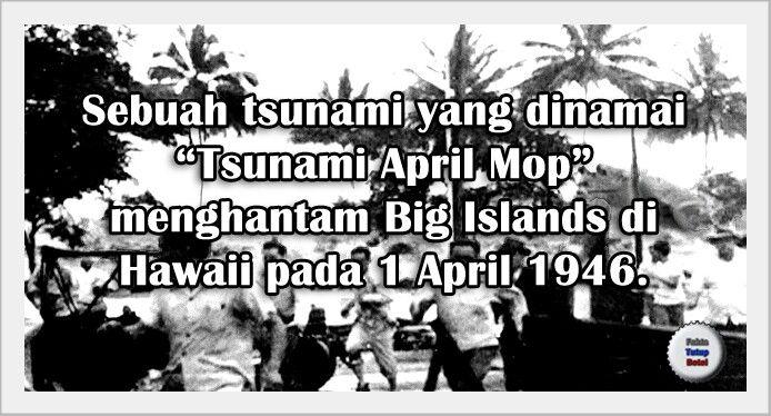 Tsunami April Mop