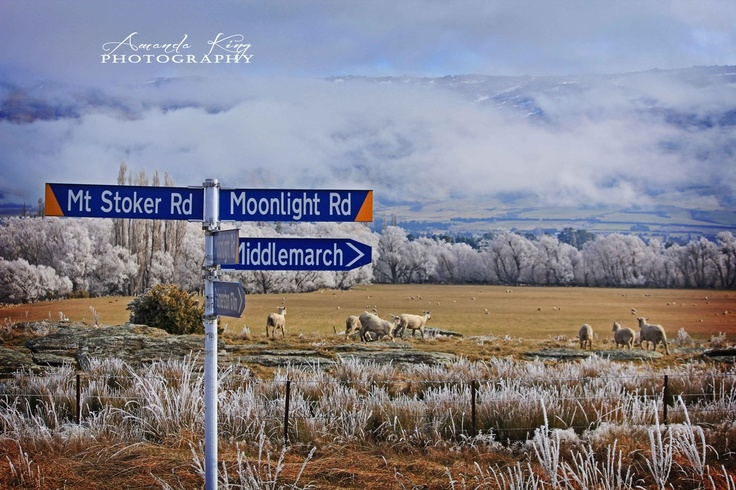 Landscape - Photography  Middlemarch,  New Zealand