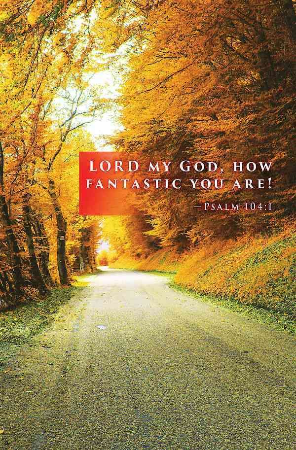 The bulletin reads: Lord my God, how fantastic you are! ~ Psalm 104:1 Sunlight breaks through the trees in a bend in the road highlighting the rich colors of fall, and illuminate the changing of the s