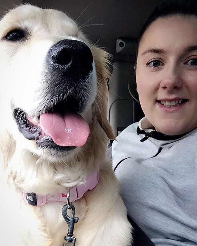 Reunited ❤️❤️ Hadn't seen my girl in 3 days  Look at her new pink collar, she has grown out of all her others yet again  by lovesummersarah. nofilter #golden #travelphotographer #puppy #goldenlove #loveher #puppiesofinstagram #pink #goldenretriever #instapet #reunited #photography #photographer #magurl #goldenretrieverpuppy #travelgram #travel #7months #prettygirl #puppylove #pup #instadog #mygirl #travelphotography #photographysouls #mamasgirl #girlsbestfriend #sloane #photographylovers…