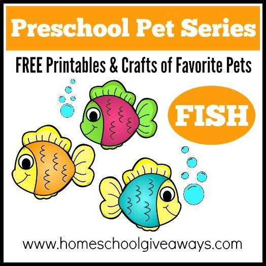preschool lesson plans pets 17 best images about pets on preschool 403