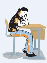 En cas de position assise prolongée, ces muscles ont tendance à se raccourcir et se contracter. Conseil: bien les étirer régulièrement. Muscles fléchisseurs de la nuque Pectoraux Muscles fléchisseurs de la hanche Muscles de la loge postérieure de la cuisse Muscles tibiaux