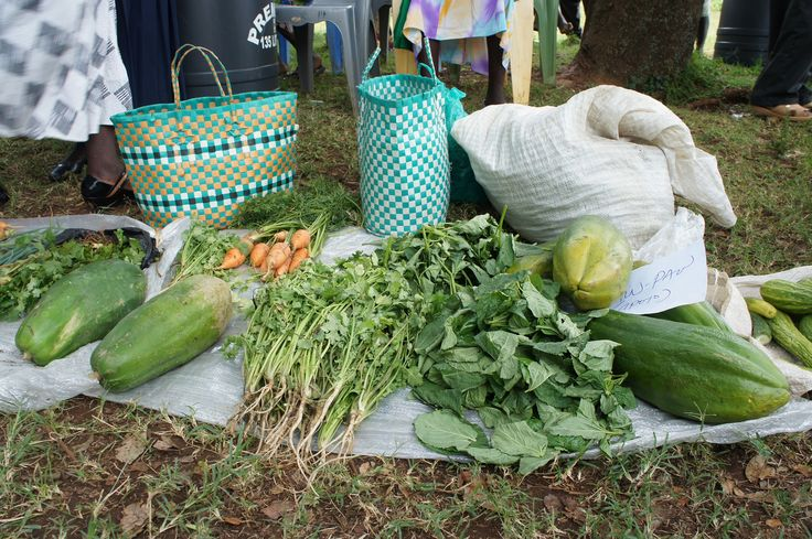 Vegetables from DIG training! #lwalacommunityalliance