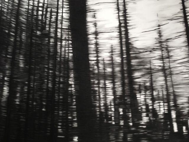 Carlijn Mens Flee Vlucht- En ren 2014 charcoal on paper 196x240cm