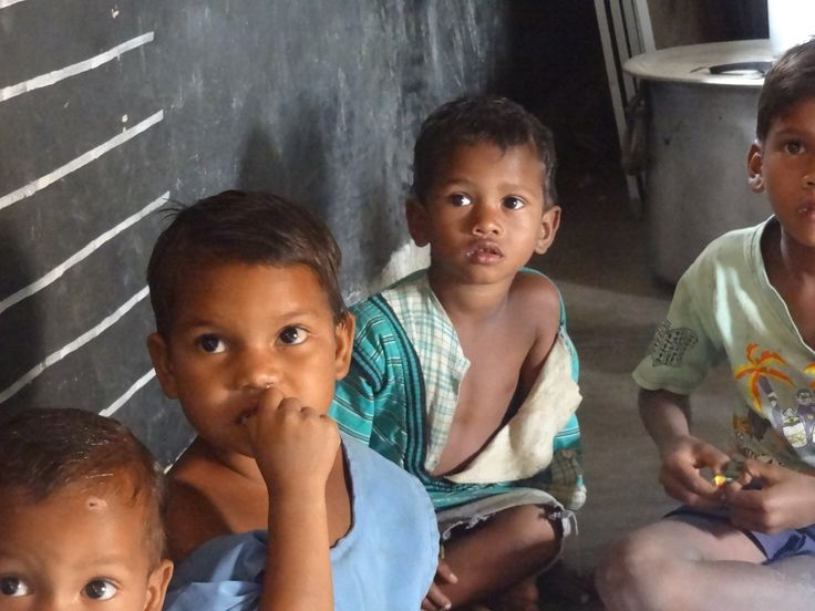 Apoyo a un programa de nutrición y profilaxis malárica en las comunidades tribales de Kanhamal-India.