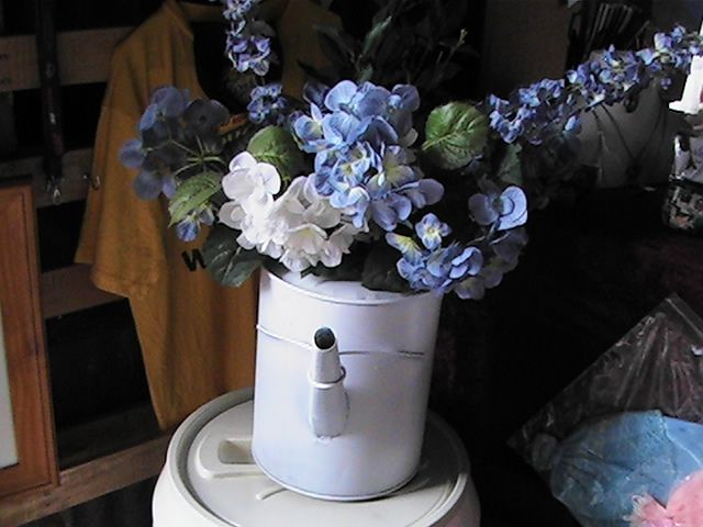 Vintage watering can turned into planter